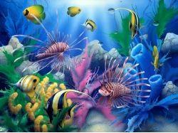 Баг для подводный мир опыт 6
