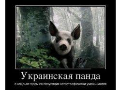 Демотиваторы 2011 про любовь 3