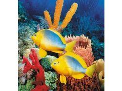 Как купить декор подводный мир 6