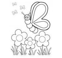 Картинки цветы с бабочками 3