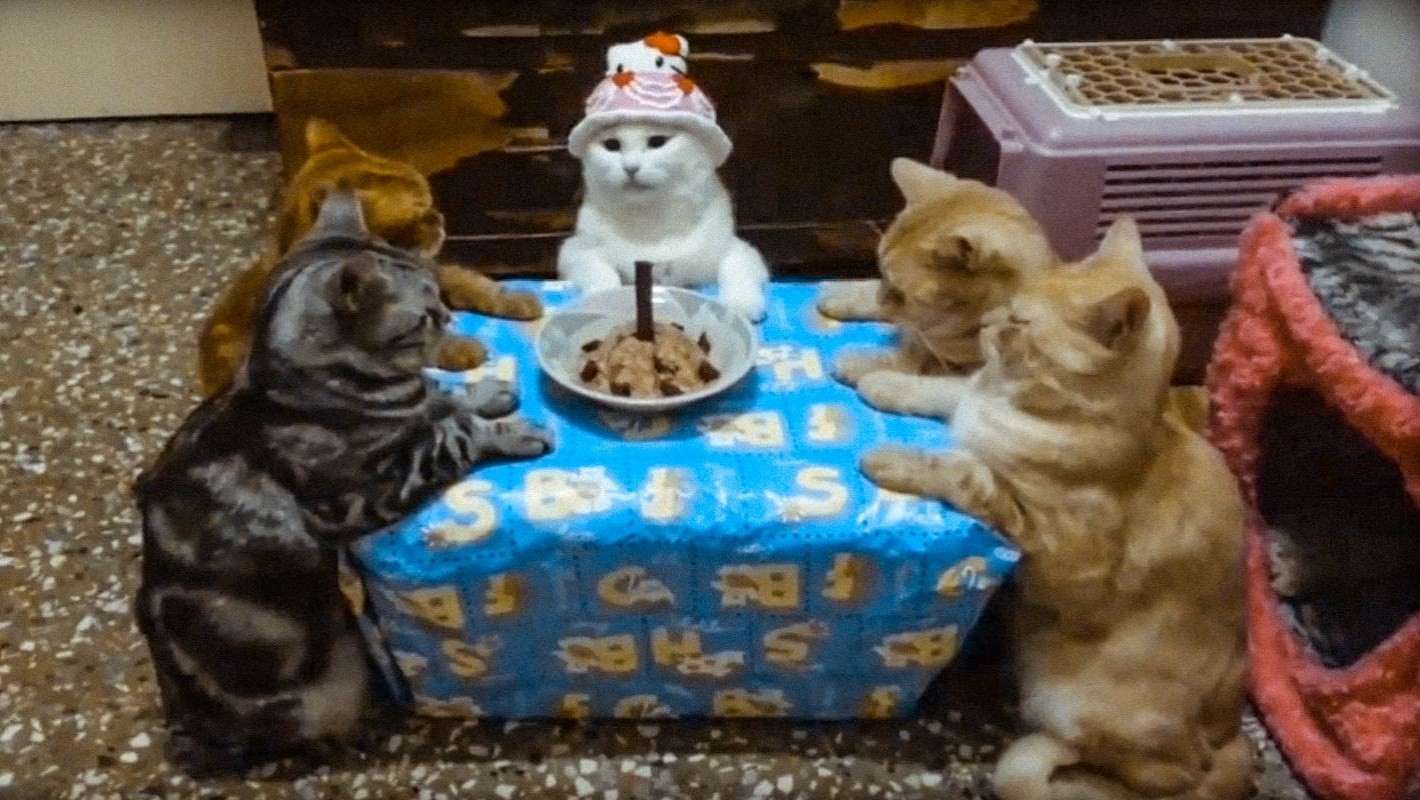 Как сделать прикольные фото ко дню рождения