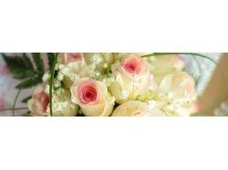 Купить магазин цветов