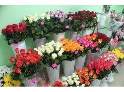 Новый магазин цветов