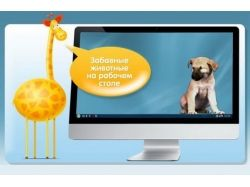 Картинки животных на компьютер