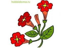 Абстрактные картинки цветов 5