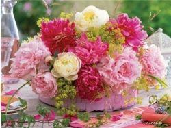 Картинки самые красивые цветы