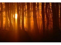Природа солнце фото
