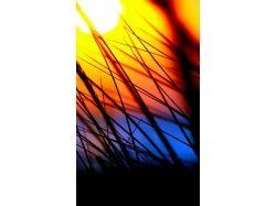 Картинки на телефон красивые природа