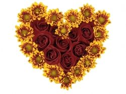 Картинки сердце из цветов
