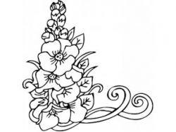 Графика картинки черно белые цветы