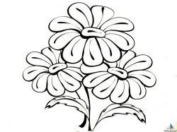 Картинки раскраски цветы букеты