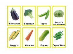 Картинки овощи для детей 4