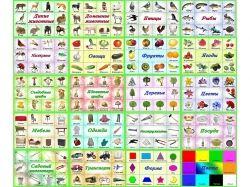 Картинки овощи для детей 6