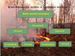 Рисунки на тему пожары