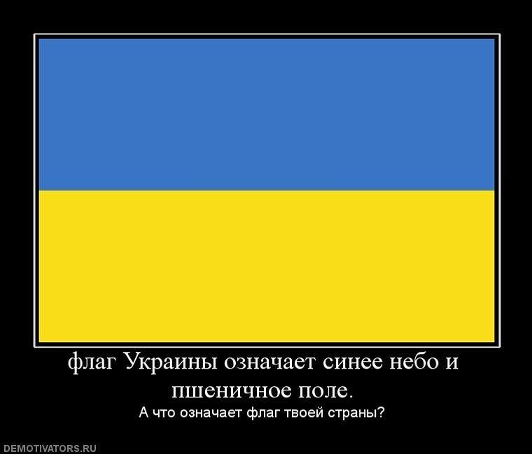 кабачки, морковь, флаг украины что символизирует желтый цвет точного масштабирования каждого