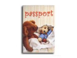 Обложки на паспорт фото
