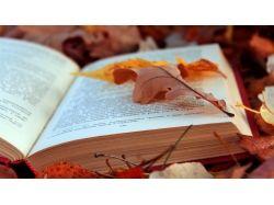Красивые книги картинки