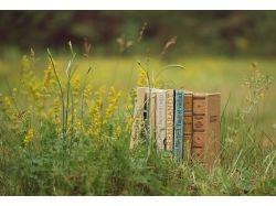 Красивые картинки книг