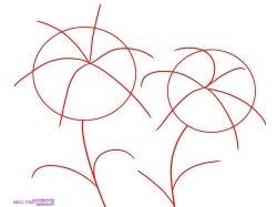 Рисунки карандашом цветы для начинающих