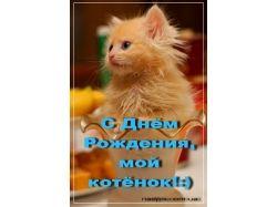 https://prikolnye-kartinki.ru/img/picture/Aug/04/a3080b731af56dc0e2424866b70c0247/mini_8.jpg