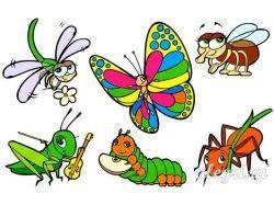 Картинки насекомые для детей 9