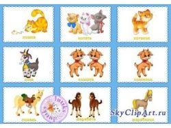 Картинки детенышей диких животных 4