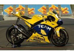 Фото спортивных мотоциклов