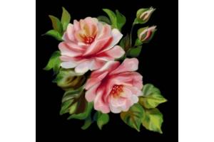 Цветы на черном фоне рисунки