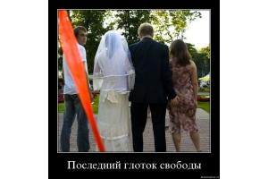 Prikol foto