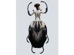 Необычные насекомые фотографии 7