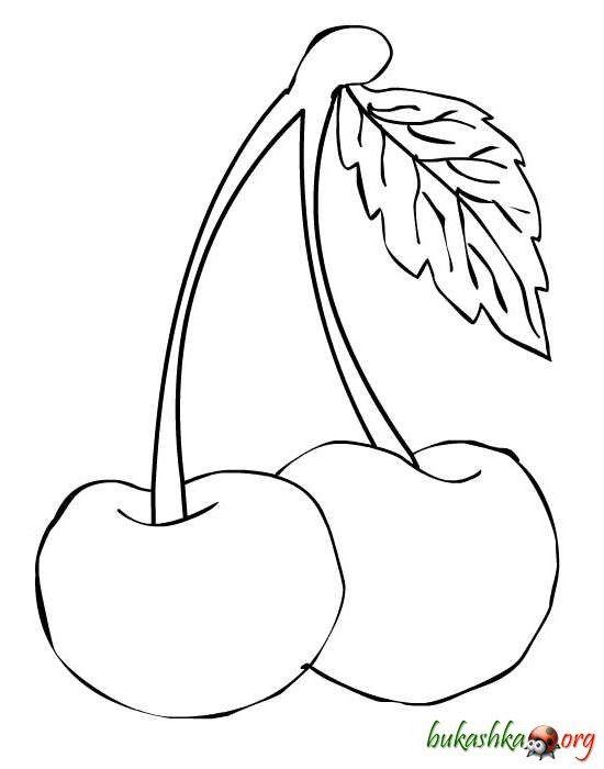 Рисунок вишни для раскрашивания