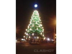 Президентская елка в москве фото