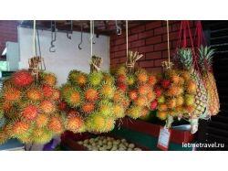 Экзотические фрукты фото описание