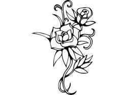 Цветы рисунки черно белые