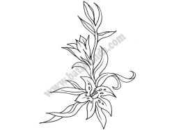 Бодиарт жен.фото цветы
