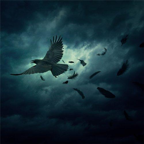 Картинки ангелов скачать бесплатно без регистрации 9