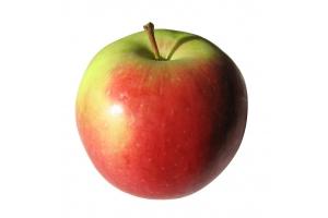 Картинка яблоко 7