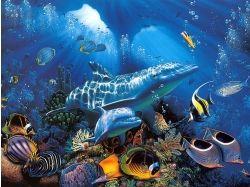 Картинки - подводный мир