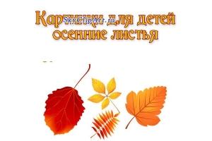 Картинки осенние листочки