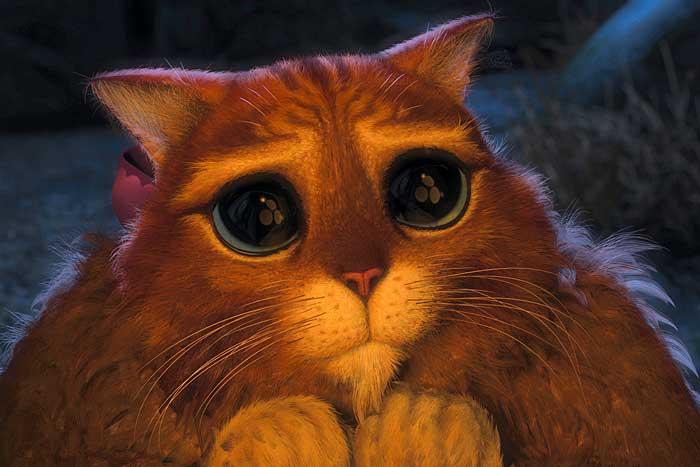 Фото кота со шрека с глазами