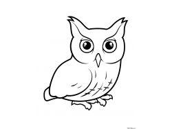 Белая сова - раскраски для детей 7