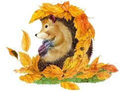 я осень нарисую и выброшу рисунки 7