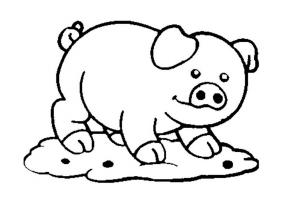 Рисунки животных для раскрашивания