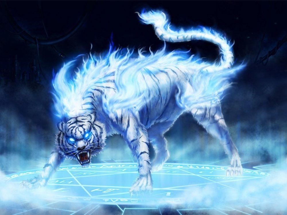 Фотообои тигр белый