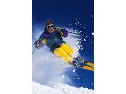 Рисунки лыжный спорт