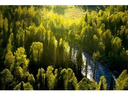 Фотографии осень в горах 7