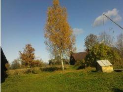 Осень россия фото 7