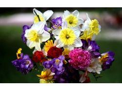 Цветы картинки букеты