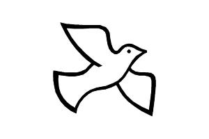 Раскраска голубь 1