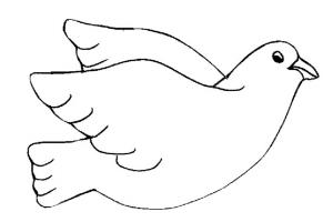 Раскраска голубь 3